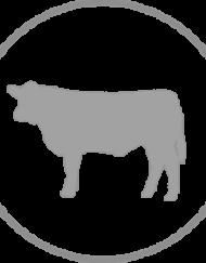 Half Beef & Hog - Final Payment